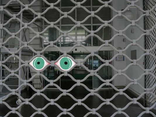 les yeux de la grille